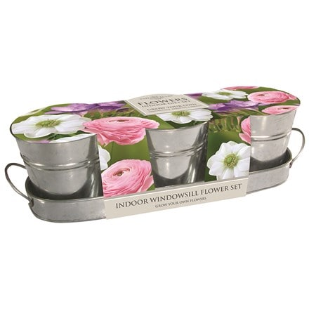 Pastel windowsill flower kit