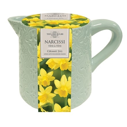 Indoor ceramic Narcissi jug