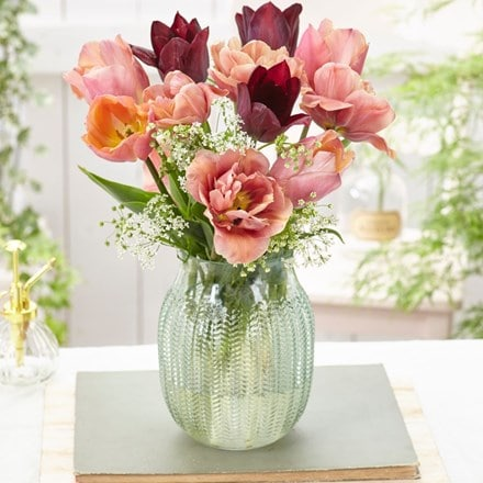 Copper blush tulip collection