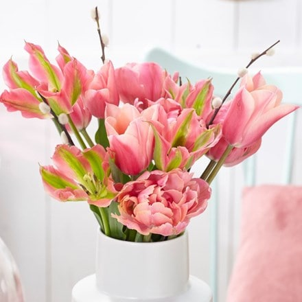 Pink chic tulip collection