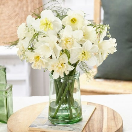 Blossom white daffodil collection