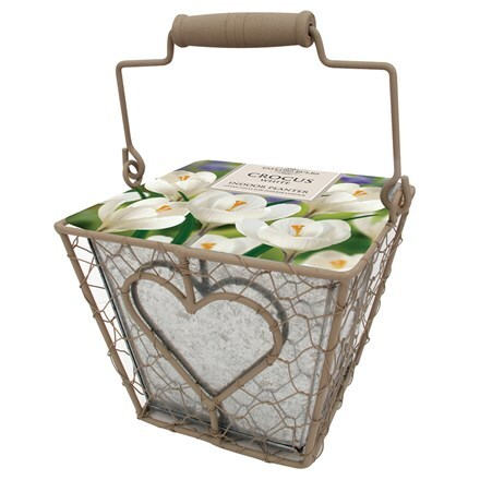 Indoor heart square planter