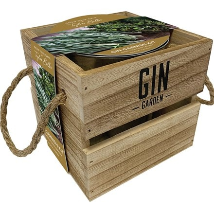 Indoor gin garnish kit rosemary & thyme