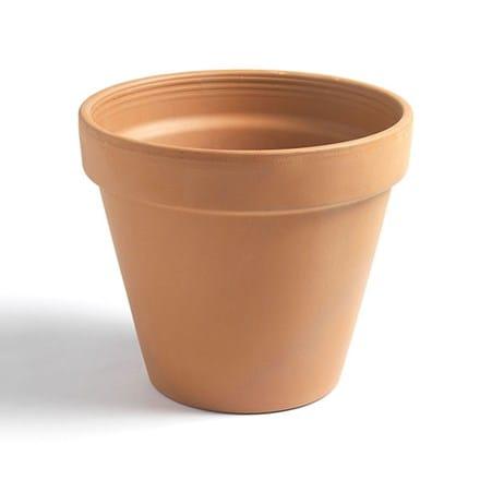 Classic terracotta pot