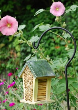 Bee nesting box with zinc roof