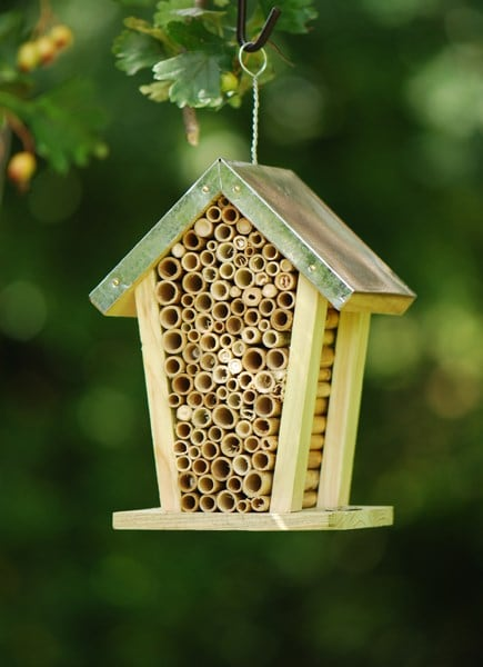Buy Bee Nesting Box With Zinc Roof Delivery By Waitrose