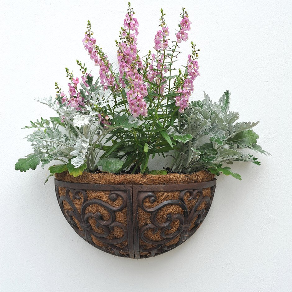 Cast iron wall manger