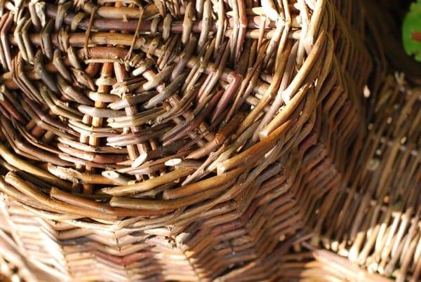 Buy Wicker Hedgehog House Delivery By Waitrose Garden In