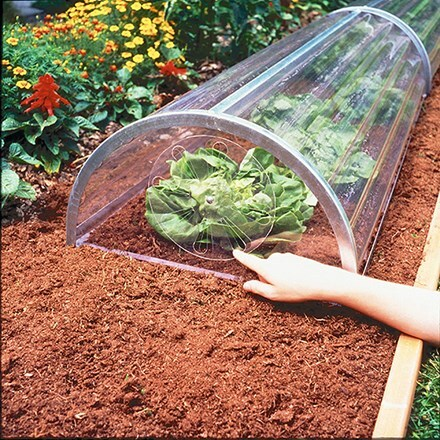 Longrow super cloche