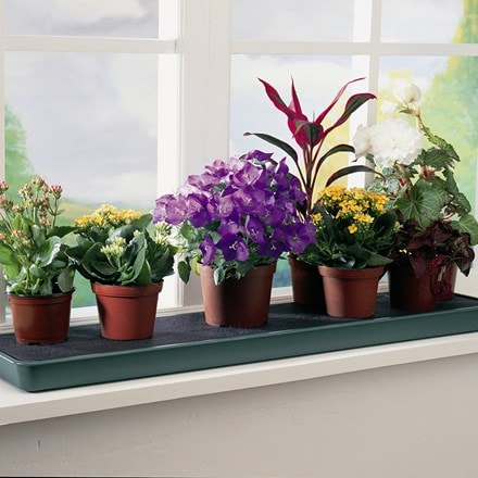 Self watering windowsill plant tray