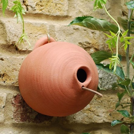 Blue tit terracotta bird pot