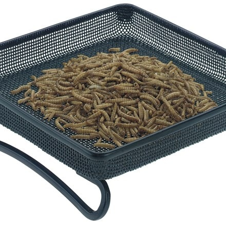Mesh ground feeder tray