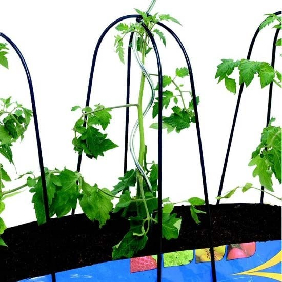 Buy Grow-bag cane frame set