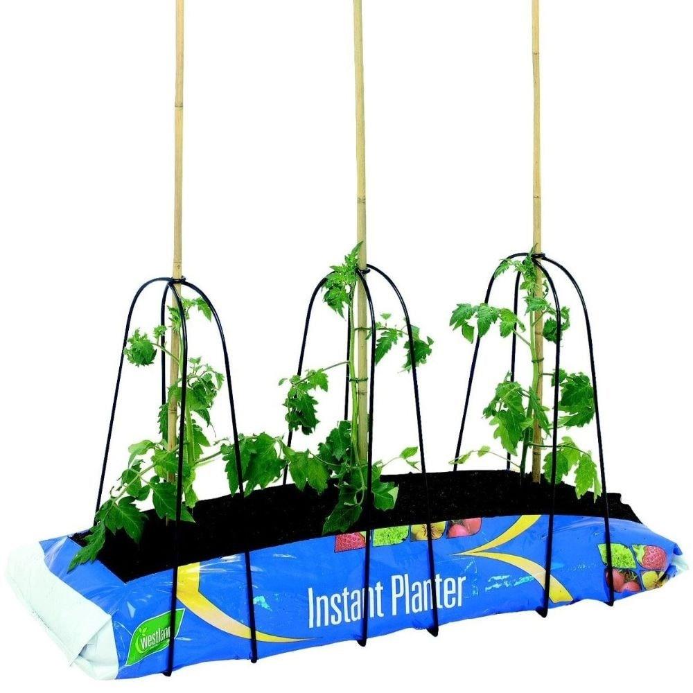 Grow-bag cane frame set