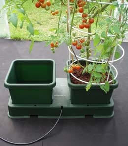 Extension kit for the easy to grow kit