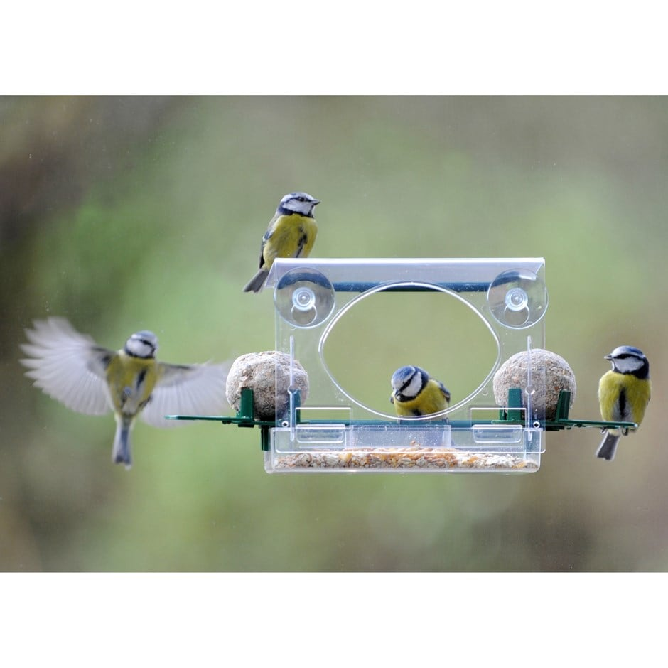 Buy Complete Window Feeder For Birds Delivery By Waitrose Garden In