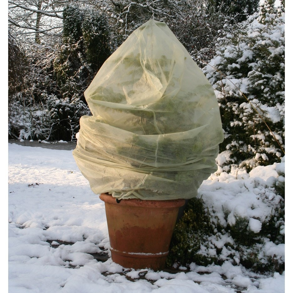 Buy Winter Fleece Plant Covers Delivery By Waitrose