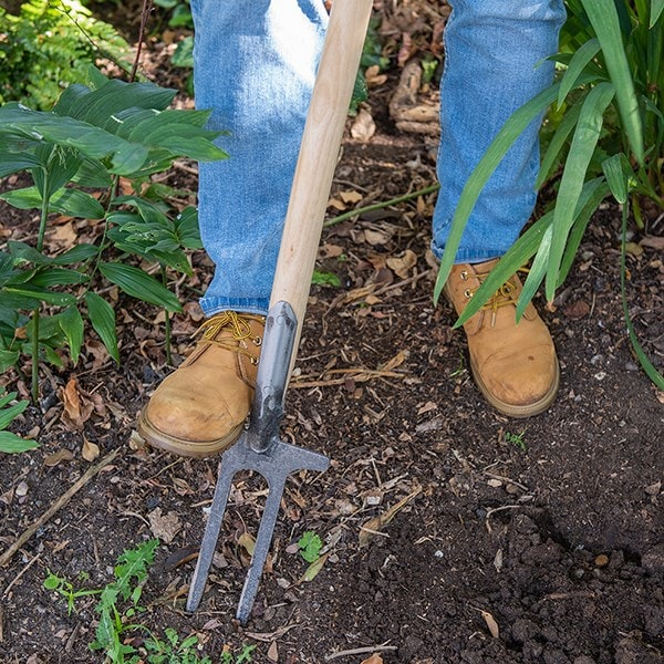DeWit two-pronged weeder / rose fork