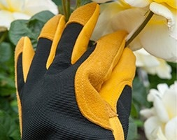 RHS gold leaf winter touch gloves