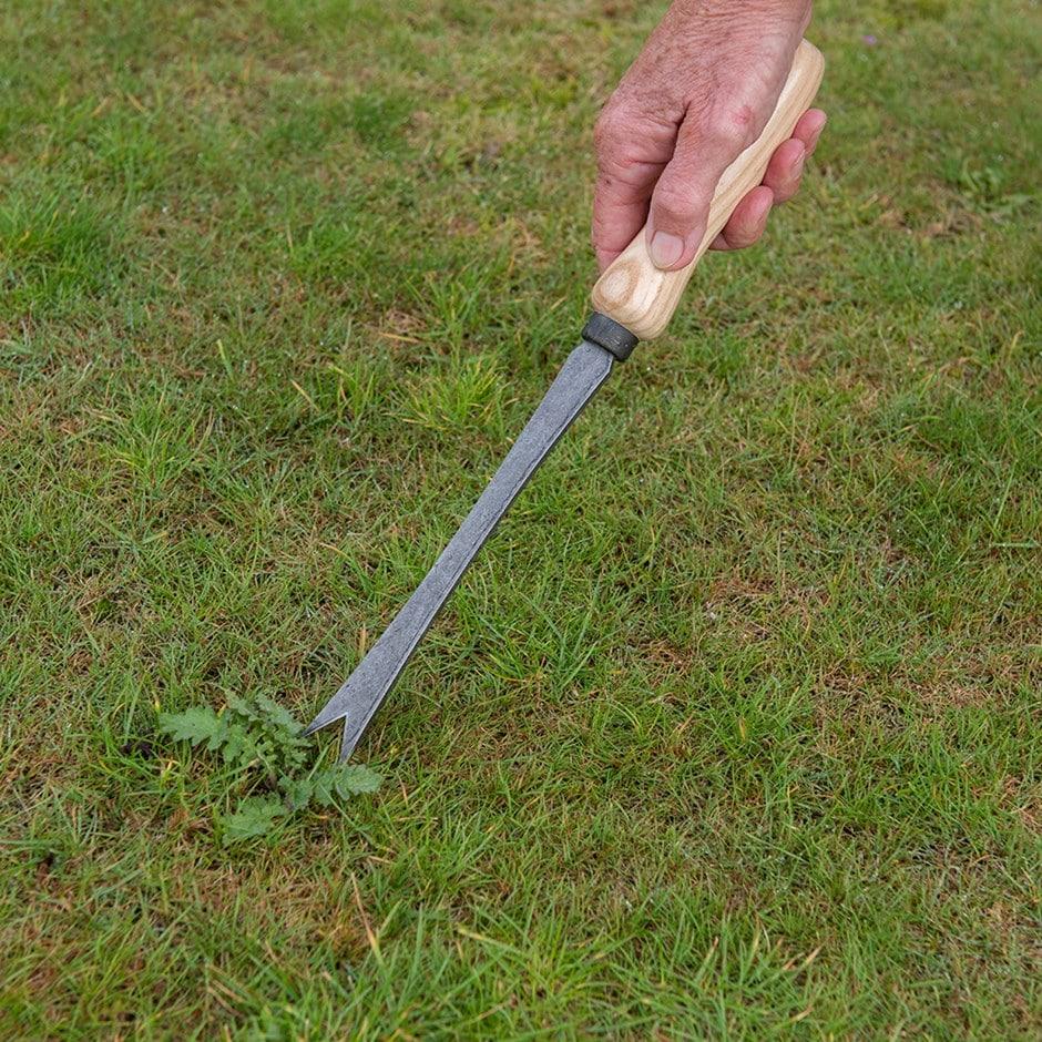 De Wit bio daisy grubber