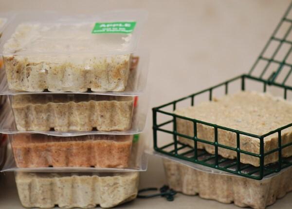 Suet cake 10 pack - bird food