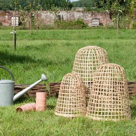 Bamboo cloche