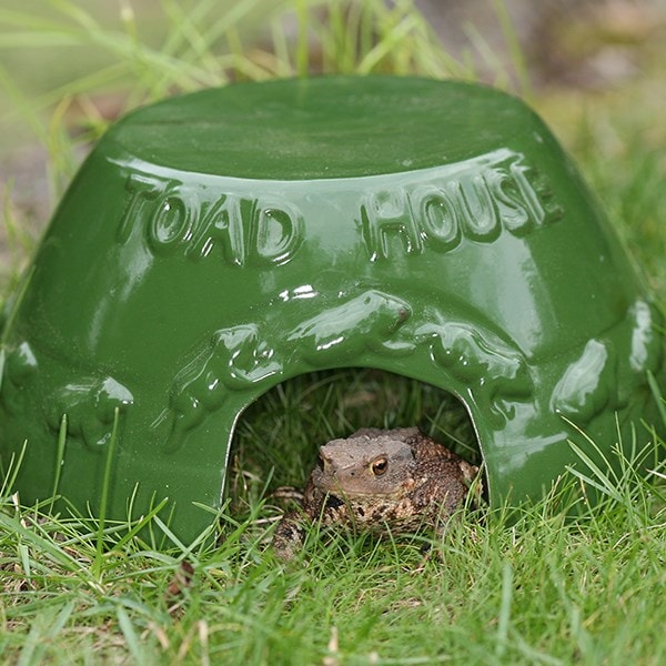 Glazed ceramic toad house