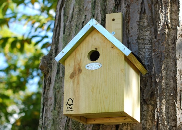 Blue tit nesting box