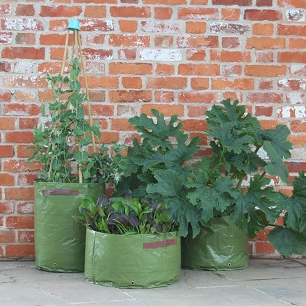 Vegetable patio planters