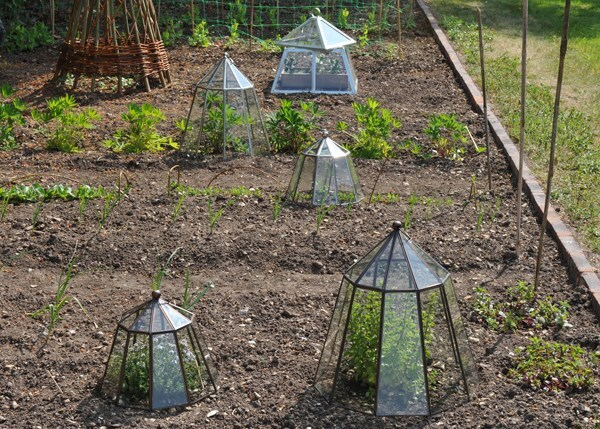 Victorian nickel lantern cloche