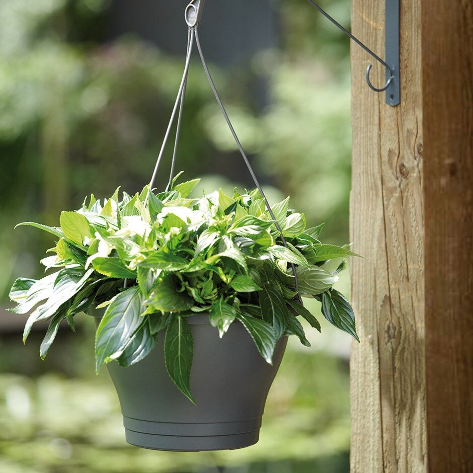Self-watering hanging pot