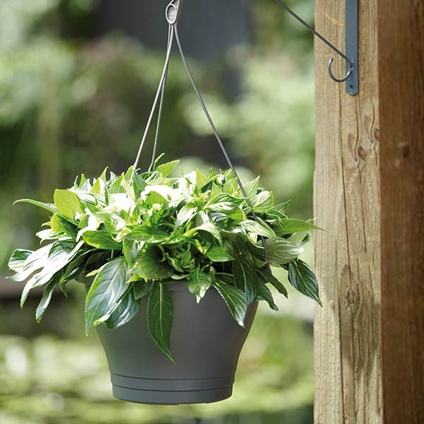 Self-watering hanging pot, 30cm