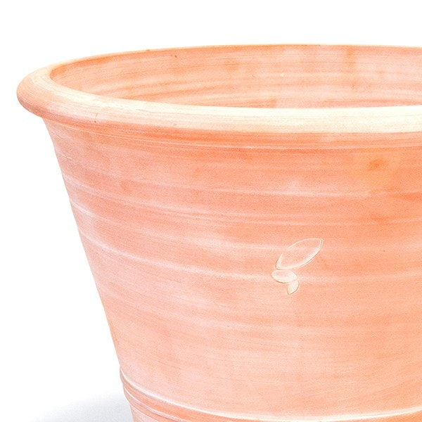 Buy terracotta citrus pot delivery by crocus for Terracotta works pots