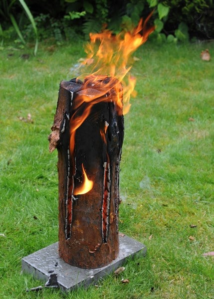 Buy Party Fire Log