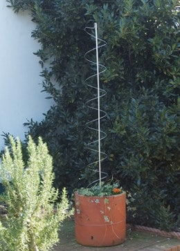 Cane and spring plant support