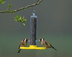 Goldfinch feeder tube