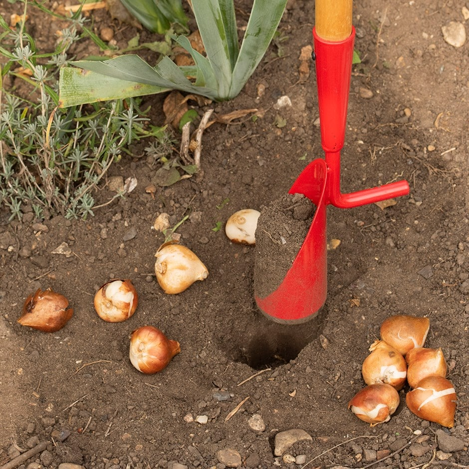 Darlac long handled bulb planter