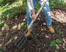 De Wit 4 prong digging fork