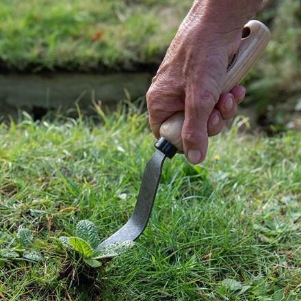 De Wit bio weeding fork