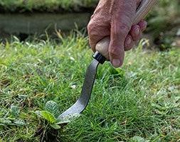 DeWit bio weeding fork