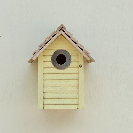 New England nest box - yellow