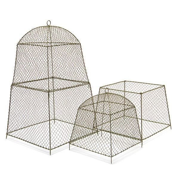 Rabbit proof cloche extension