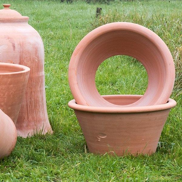 Terracotta rimmed grow pot
