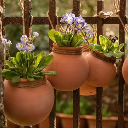 Terracotta babylon hanging pot