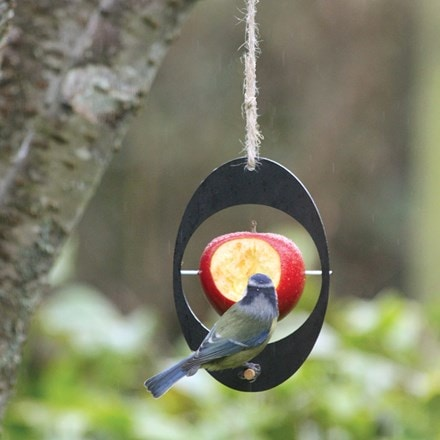 Eco apple bird feeder