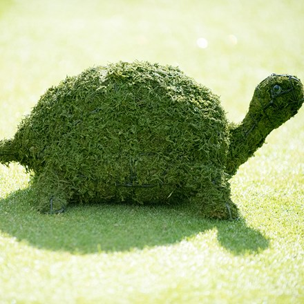 Tortoise garden sculpture