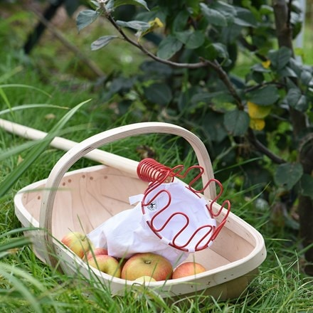 Buy product delivery by waitrose garden in association with crocus sussex garden trug negle Image collections