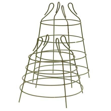 Cage plant support