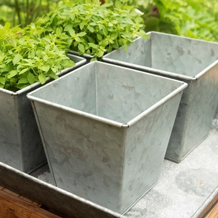 Galvanised square herb pot