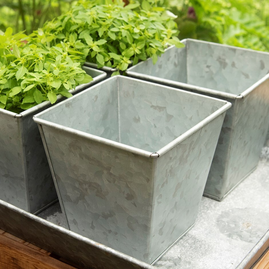 Image of Galvanised square herb pot